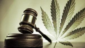 Dangers of Legalizing Marijuana