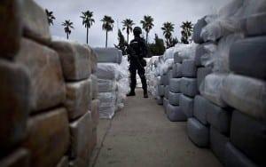 legalizing marijuana forces cartels to change tactics